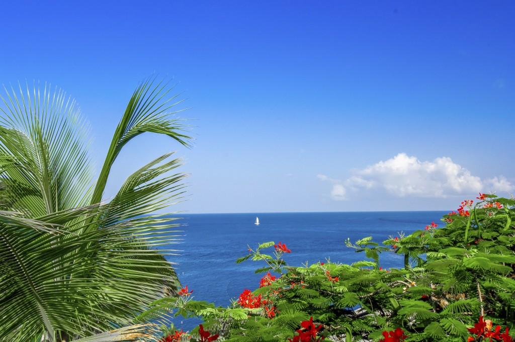 The Caribbean Sea-Pt.II